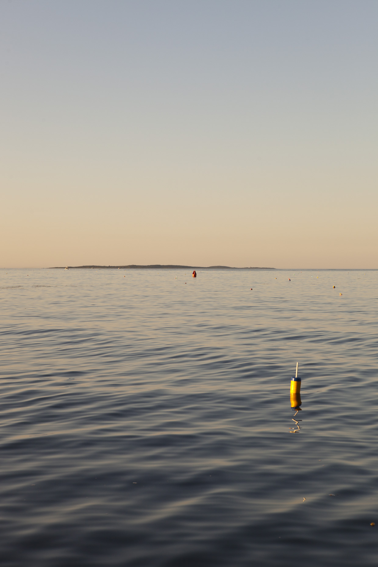 Lobster Buoys in the Ocean