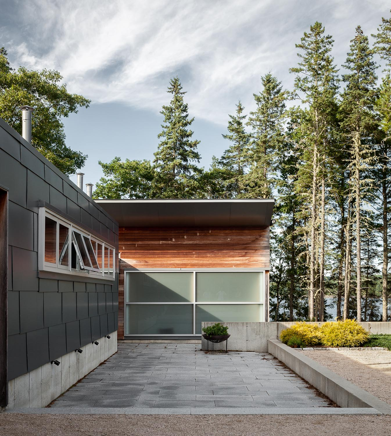 Maine Modern with Pine Trees
